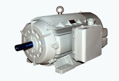 Crompton Greaves Electric Motor Distributors in Mumbai