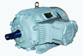 Crompton Greaves Flame Proof Motors